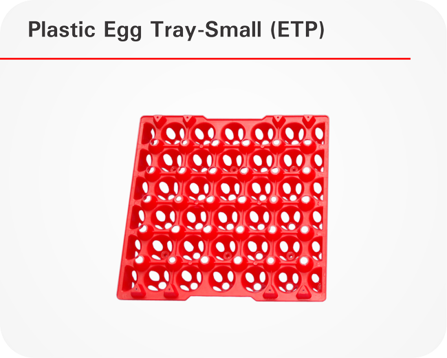 Plastic-Egg-Tray-Small-(ETP)