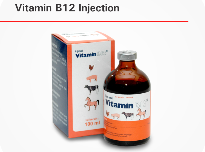 VitaminB12InjectionFamily